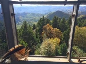 View from Mount Sterling fire tower.
